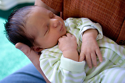 North America, United States, Washington, Seattle, Newborn baby boy asleep in parent's arms