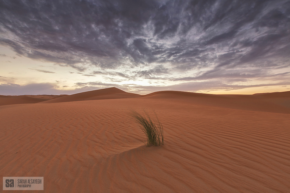 """The Rub' al Khali (Arabic: الربع الخالي ar-Rubʿ al-Ḫālī,[note 1] """"the empty quarter"""") or Empty Quarter is the largest sand desert in the world,[1] encompassing most of the southern third of the Arabian Peninsula, including most of Saudi Arabia and areas of Oman, the United Arab Emirates, and Yemen. The desert covers some 650,000 square kilometres (250,000 sq mi) (the area between long. 44°30′ −56°30′E., and lat. 16°30′ −23°00′N).[2]"""
