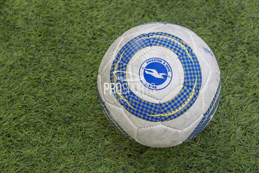 Brighton & Hove Albion FC football ahead of the FA Cup fourth round match between Brighton and Hove Albion and West Bromwich Albion at the American Express Community Stadium, Brighton and Hove, England on 26 January 2019.