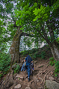 A hiker walks on the trail that leads to Kheerganga in the Parvati valley in Kullu, Himachal Pradesh, India