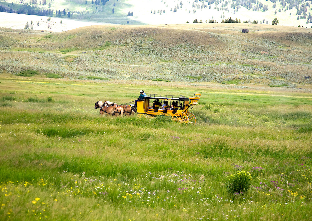 """Yellowstone National Park, WY:  Stagecoach rides offer a taste of the past, a relatively new way to explore the nation's first national park...From Yellowstone.com:  """"During the 1880s, the whole face of visitation to Yellowstone Park changed. In 1881, the railroad finally arrived in eastern Montana. .."""" 'Suddenly, with the rails here, you had visitors,? says Lee Whittlesey, historical archivist for Yellowstone. ?This meant an immediate need for transportation. But all there was, was a bunch of 'good ol' boys' who happened to have wagons and horses.?..""""Thus began the first mechanized travel in Yellowstone Park - the stagecoach. Stagecoach travel continued in Yellowstone until 1917, when stagecoaches were no longer allowed in the park...""""Thanks to a couple of companies in the two national parks, visitors to Yellowstone country can ride in a stagecoach and imagine what it must have been like to explore the parks the way early visitors did...""""Yellowstone National Park Lodges offers visitors rides in an authentic stagecoach replica in the park's Roosevelt Country, in the northern section of the park. """"..In Grand Teton National Park, sign up for a stagecoach adventure with Grand Teton Lodge Company..."""