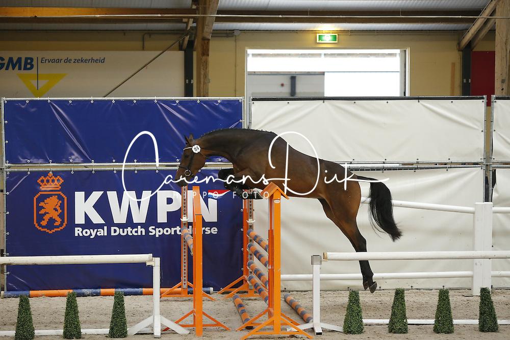 084 - Ganolivia VDL<br /> Vrijspringen 3 jarige merries<br /> KWPN Paardendagen - Ermelo 2014<br /> © Dirk Caremans