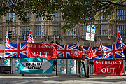 On the day that the EU in Brussels agreed in principle to extend Brexit until 31st January 2020 (aka 'Flextension') and not 31st October 2019, a Brexiteer stands next to Brexit Party flags and banners during a Brexit protest outside parliament, on 28th October 2019, in Westminster, London, England.