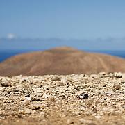 Fuerteventura, Kanarische Inseln, Spanien