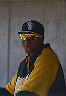PHOENIX, AZ - FEBRUARY 23:  Outfielder Michael Choice #32 of the Oakland Athletics sits in the dugout in the spring training game against the Milwaukee Brewers at Maryvale Baseball Park on February 23, 2013 in Phoenix, Arizona.  (Photo by Jennifer Stewart/Getty Images) *** Local Caption *** Michael Choice