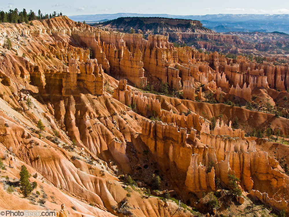 Sunrise light strikes orange and white hoodoos in Bryce National Park, Utah, USA. Bryce is actually not a canyon but a giant natural amphitheater created by erosion along the eastern side of the Paunsaugunt Plateau. The ancient river and lake bed sedimentary rocks erode into hoodoos by the force of wind, water, and ice.