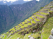 Agricultural terraces at the Incan ruins of Machu Picchu, near Aguas Calientes, Peru.