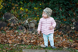 Gemma Marie at 15 months old at Thanksgiving in Crestwood and Highview, Thursday, Nov. 22, 2018  in PROSPECT and LOUISVILLE.