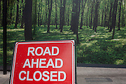 A Road Ahead Closed sign in a central London street, standing in front of an urban construction hoarding featuring a woodland landscape.