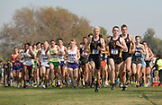 Nov 9, 2018; Sacramento, CA, USA; Fearghal Curtin (33), Garrett O'Toole (37) and John Reniewicki (38) of Arizona State lead the men's race during the NCAA West Regional at Haggin Oaks Golf Course.