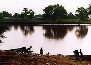 Donkey Fight - Landscape - Podor Senegal