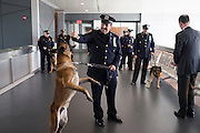 Police Officer Thomas Regnier with Canine Mikey, honoring Police Officer Michael Williams of the 47th Precinct, before the NYPD Transit Bureau Canine Unit Graduation Ceremony at the College Point Police Academy in Queens, NY on Tuesday, Oct. 6, 2015.<br /> <br /> Andrew Hinderaker for The Wall Street Journal<br /> NYSTANDALONE