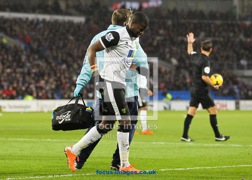 Picture by Tom Smith/Focus Images Ltd 07545141164<br /> 01/02/2014<br /> S&eacute;bastien Bassong of Norwich City limps off to receive more treatment during the Barclays Premier League match at the Cardiff City Stadium, Cardiff.