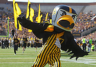 September 29 2012: Iowa Hawkeyes mascot Herky takes the field before the start of the NCAA football game between the Minnesota Golden Gophers and the Iowa Hawkeyes at Kinnick Stadium in Iowa City, Iowa on Saturday September 29, 2012. Iowa defeated Minnesota 31-13 to claim the Floyd of Rosedale Trophy.