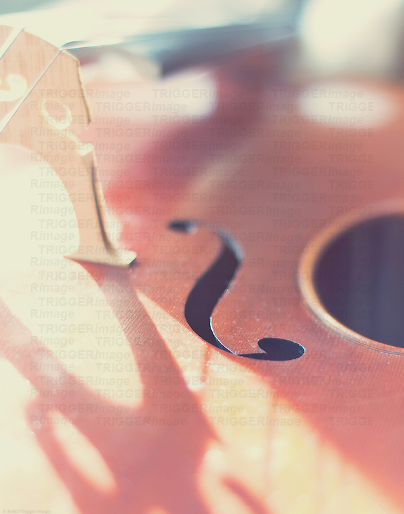 still life photo of a cello in natural light