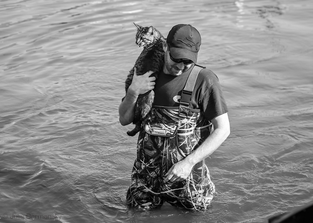 Cat being rescued as people evacute from Vidor, Texas on Sept. 1, 2017 days after Hurricane Harvey first made landfall in Texas. The water in Vidor conintued to rise as water from a damn near by was released.