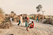 Women collect mustard leaves in a field accross an oil refinery along the Ganges, 2014.
