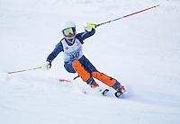 Tony Buttinger Memorial Slalom at Gunstock Ski Club Sunday, February 3, 2013.