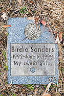 "Wantagh, New York, USA. February 5, 2017.  Blue and gray granite tombstone for pet bird BIRDIE SANDERS (1992 - 1999) with epitaph ""My sweet girl..."" inscription is one of hundreds of gravestones in Bide-a-Wee Pet Memorial Park cemetery outside the Last Hope Animal Rescue building on Long Island."