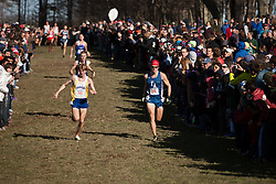 New England High School XC Championship, Jake Feinstein, Silas Eastman race for third