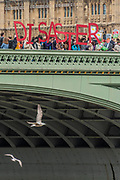 Showing the large message on Westminster bridge - Trump & May Climate Disaster protest in support of the US climate march today. As Trump reaches his first 100 days and pushes to slash the US climate research budget. In the UK the government has been reducing budgets and appears to be veering away from Climate Act commitments by forcing through a 3rd runway at Heathrow.