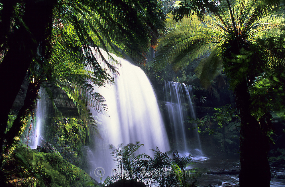 Russell Falls, a beautful rainforest waterfall in Mt Field National Park, Tasmania