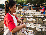 22 FEBRUARY 2017 - BAN LAEM, PETCHABURI, THAILAND: Workers set out fish to dry on a rack in Ban Laem, Thailand. The fish, a type of small sting ray, are dried in the sun for a day and then sold. They are used in fried dishes.       PHOTO BY JACK KURTZ