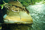 A 1970 GTO, found half buried in a creek bed in the mountains of North Carolina near a very sharp curve.