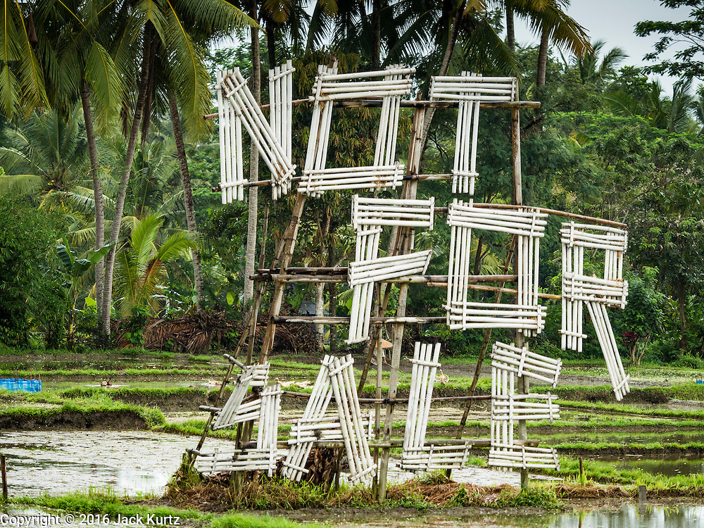 "18 JULY 2016 - UBUD, BALI, INDONESIA:    A large ""Not For Sale"" sign in a rice field near Ubud. Many rice fields around Ubud have been sold and turned into homes for foreign retirees or expensive hotels for foreign tourists. Rice is an integral part of the Balinese culture. The rituals of the cycle of planting, maintaining, irrigating, and harvesting rice enrich the cultural life of Bali beyond a single staple can ever hope to do. Despite the importance of rice, Bali does not produce enough rice for its own needs and imports rice from nearby Thailand.    PHOTO BY JACK KURTZ"