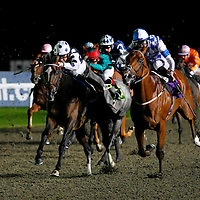 Roxy Flyer and Pat Dobbs winning the 8.50 race