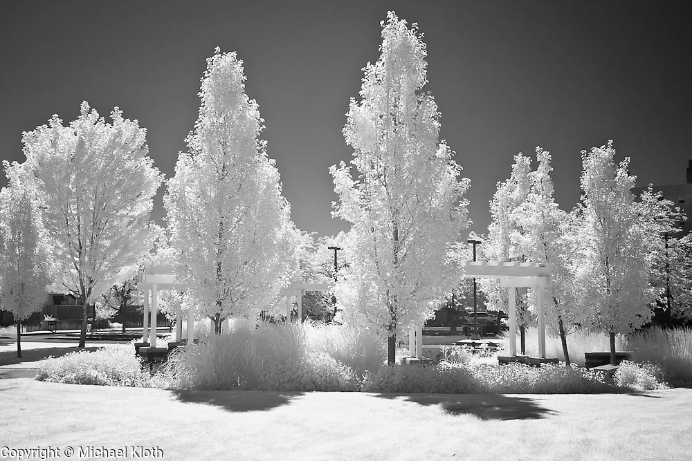 Desert oasis in Pasco, WA.  Infrared (IR) photograph by fine art photographer Michael Kloth. Black and white infrared photographs