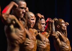 20160324 Bodybuilding