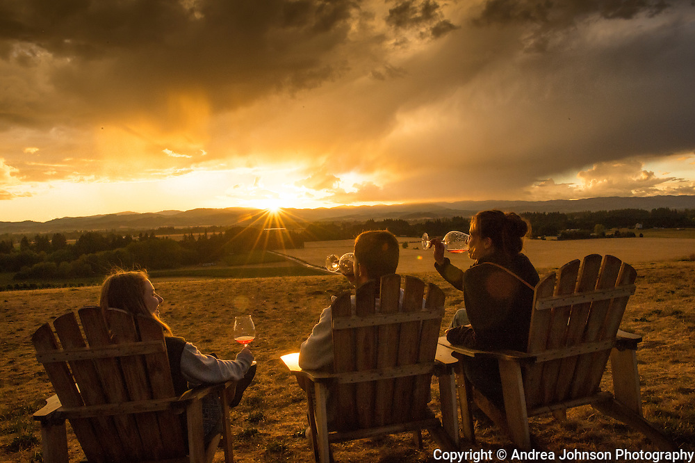 Enjoying wine tasting at sunset overlooking the vineyard , Anne Amie winery, Yamhill, Willamette Valley, Oregon