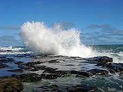 Curio Bay, crashing wave 5