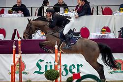 KÖHLBRANDT Hinerk (GER), Cedric 83<br /> Neustadt-Dosse - CSI 2019<br /> Youngster Tour Finale 8jährige Pferde<br /> 13. Januar 2019<br /> © www.sportfotos-lafrentz.de/Stefan Lafrentz