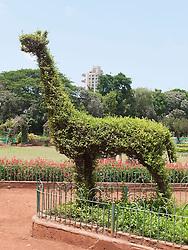 Topiary animal at the Hanging Gardens or Ferozeshah Mehta park, Mumbai.