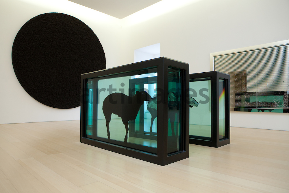 Damien Hirst : Black Sheep, Divided.2008