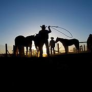 Sunrise, o6 Ranch, Alpine, Texas