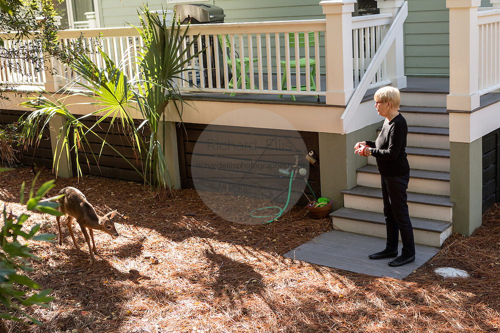 Resident Linda Freeman watches a deer in her yard on Fripp Island, SC.