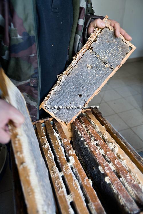 Corsica. France. Mr Preziosi Beekeeper in Tradicetto  Corsica south  France    / Mr Preziosi Apiculteur a tradicetto, gite habitat traditionel en pierre  Corse du sud  France  /