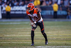 OAKLAND, CA - NOVEMBER 17: Wide receiver Auden Tate #19 of the Cincinnati Bengals lines up for a play against the Oakland Raiders during the third quarter at RingCentral Coliseum on November 17, 2019 in Oakland, California. The Oakland Raiders defeated the Cincinnati Bengals 17-10. (Photo by Jason O. Watson/Getty Images) *** Local Caption *** Auden Tate