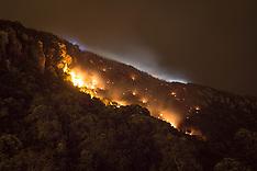Tauranga-Scrub fire burns on slopes of Mt Maunganui