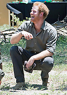 Prince Harry Visits Kruger Park, South Africa