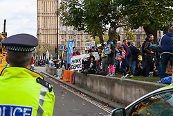 "Parliament Square, London, October 25th 2014. Activists from Occupy Democracy continue their small protest against ""capitalism's usurping of democracy"", outside Parliament. They demand that the government puts ""people before profit"" and that the proposed TTIP protocol between Europe and the US is dropped, and that attempts to further privatise the NHS and other public services are stopped. Heritage Wardens from the GLC continue with the support of dozens of police officers to keep the protesters on the periphery of parliament square, occasionally taking banners and posters from the protesters. PICTURED: Police officers watch as protesters ask passing traffic to ""honk for democracy""."