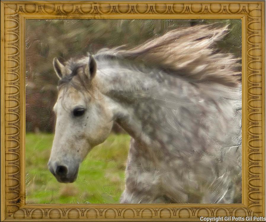 Horses in Art Horses in Art