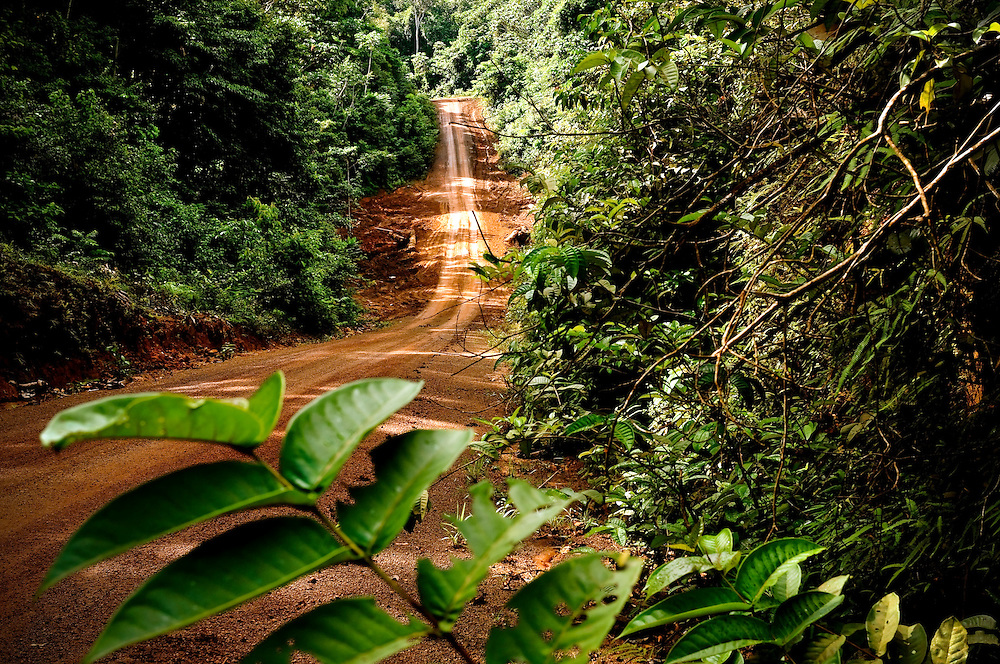 The Georgetown-to-Lethem road as it passes through the Iwokrama rainforest. Government plans to pave the 350 mile road from Georgetown, its coastal capital, to its southern border are expected to open Guyana to booming trade with neighboring Brazil, a buying super power in South America with 200 times the population of Guyana. According to Guyana's Minister of Agriculture, Guyana has 540,000 acres of potential farmland that the road will make accessible for cultivating soybeans and crops to make ethanol. Government officials estimate the project will cost $300 million US dollars.