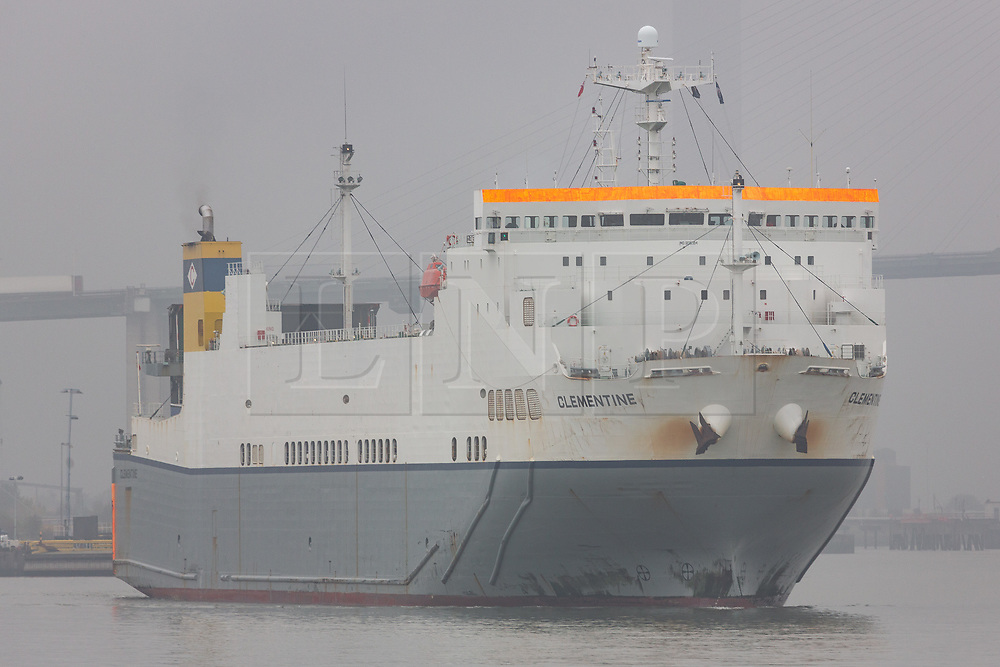 © Licensed to London News Pictures. 24/10/2019. Greenhithe, UK. Roll-on-roll-off cargo ship Clementine pictured heading down the River Thames today to make her regular journey between Purfleet and Zeebrugge. A day earlier she arrived at the port on the Thames at 00:30 which is when the police believe a trailer containing 39 bodies arrived at the port. Clementine has been named by one Belgian newspaper as the ship which carried the trailer from Zeebrugge to Purfleet. The ship makes daily crossings and departed Purfleet yesterday morning, arriving back on the Thames early today before leaving again at 11:30.  Photo credit: Rob Powell/LNP