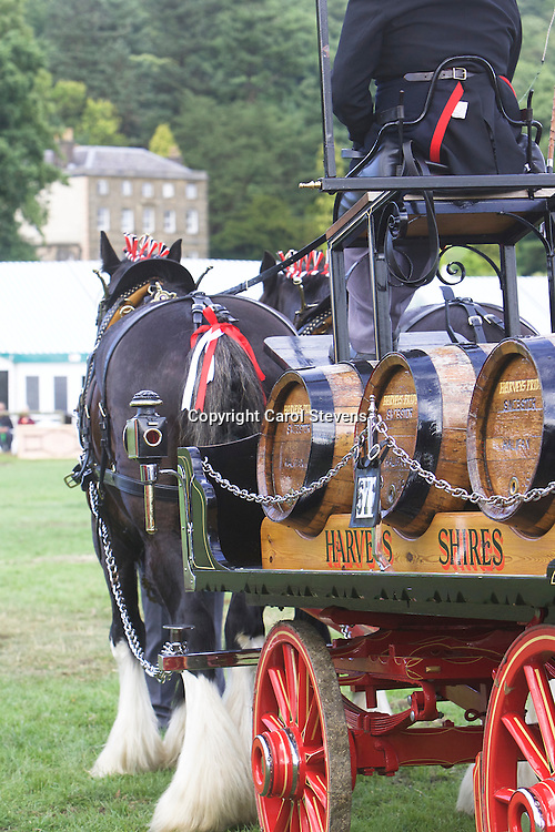 Harvey's Shires, Harveys George and Whitewater Warrior<br /> 8th  Pairs Turnouts