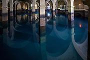 Livorno, Toscana, Italia, Cisternone. Tuscany, Italy, Cistern. La Gran Conserva fu costruita tra il 1829 ed il 1842 su progetto di Pasquale Poccianti per immagazzinare e distribuire le acque sorgive provenienti da Colognole. Architect Pasquale Poccianti, sec. XIX.