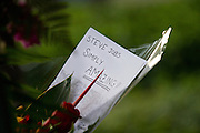 Flowers, apples, and other memorabilia fill Apple's Cupertino campus' front lawn as Apple employees and locals visit the Apple campus at 1 Infinite Loop in Cupertino, Calif., to remember CEO Steve Jobs on Oct. 6, 2011.  Jobs passed away on Oct. 5, 2011, after an eight year battle with pancreatic cancer.  Photo by Stan Olszewski/SOSKIphoto